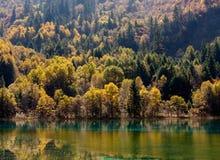 Национальный парк Jiuzhaigou Стоковая Фотография RF