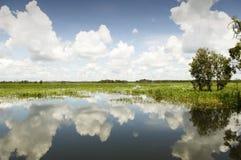национальный парк kakadu Стоковые Изображения