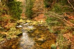 Национальный парк Karkonoski, Szklarska Poreba, Польша стоковые фото