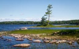 национальный парк kejimkujik Стоковое Изображение RF