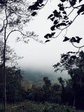Национальный парк Khoa Yai, Таиланд Стоковая Фотография
