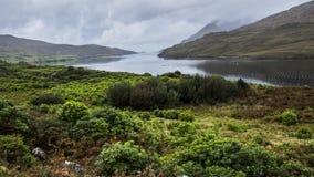 Национальный парк Kilarnry Стоковая Фотография RF