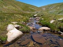 национальный парк kosciuszko Стоковое Фото