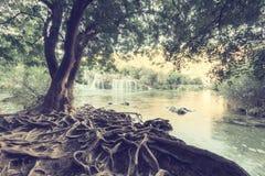 Национальный парк Krka, красивый ландшафт природы, взгляд buk Skradinski водопада, Хорватия стоковое изображение