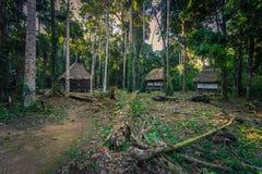 Национальный парк Manu, Перу - 7-ое августа 2017: Ложи джунглей Coc стоковые изображения rf