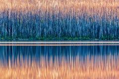 национальный парк mcdonald ледникового озера Стоковая Фотография RF
