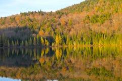 Национальный парк Mont Tremblant Стоковые Изображения