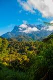 Национальный парк Mount Kinabalu, Сабах Борнео, Малайзия стоковая фотография rf