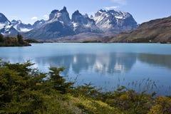 Национальный парк Torres del Paine, Патагония, чилеански Стоковое Изображение