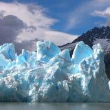 Национальный парк Torres del Paines - Патагония - Чили стоковое фото rf