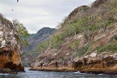 Национальный парк Vallarta сводов под водой или парк Las Peñas Лос Arcos морской или утесы, с большим разнообразием includi морс Стоковое Фото