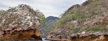 Национальный парк Vallarta сводов под водой или парк Las Peñas Лос Arcos морской или утесы, с большим разнообразием includi морс Стоковая Фотография