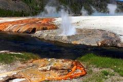 национальный парк yellowstone стоковое фото rf