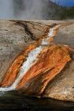 национальный парк yellowstone Стоковые Изображения RF
