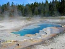 национальный парк yellowstone hotsprings Стоковые Фото