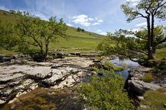 национальный парк yorkshire Англии участков земли Стоковая Фотография RF