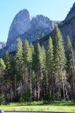 Национальный парк Yosemite, Невада в Северной Америке Стоковое фото RF