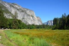 Национальный парк Yosemite, Невада в Северной Америке Стоковые Фото