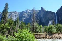 Национальный парк Yosemite, Невада в Северной Америке Стоковое Фото