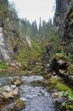 Национальный парк Yugyd VA, место ЮНЕСКО Стоковое Изображение RF