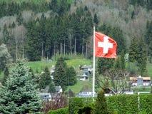 Национальный флаг и типичный мотив стоковые изображения
