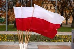 Национальный флаг Польша Стоковые Фотографии RF