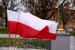 Национальный флаг Польша Стоковые Изображения