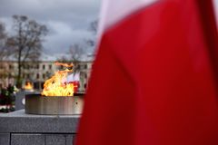 Национальный флаг Польша Стоковое Фото