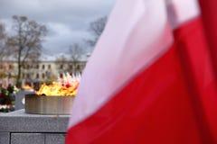 Национальный флаг Польша Стоковая Фотография