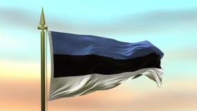 Национальный флаг Эстонии развевая в ветре против анимации петли замедленного движения предпосылки неба захода солнца безшовной акции видеоматериалы