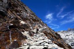 национальное sagarmatha парка Непала Стоковая Фотография RF