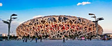 Национальный крытый стадион: гнездо птиц Стоковая Фотография RF