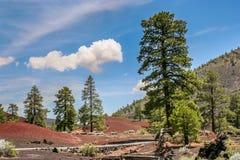 Национальный монумент вулкана кратера захода солнца стоковое фото rf