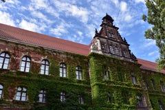 Национальный музей Wroclaw Стоковые Фотографии RF