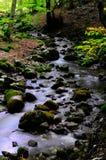 Национальный парк Абруццо Лацио Молизе стоковые фотографии rf