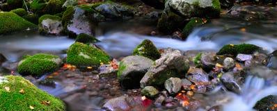 Национальный парк Абруццо Лацио Молизе стоковое изображение