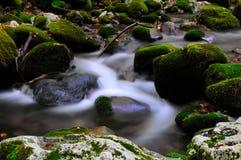 Национальный парк Абруццо Лацио Молизе стоковые изображения rf