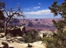 Национальный парк гранд-каньона, AZ, southrim Стоковые Фото