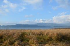 Национальный парк Джима Corbett Стоковые Изображения RF