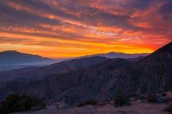 Национальный парк дерева Иешуа захода солнца Стоковые Изображения RF