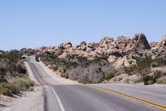 Национальный парк дерева Иешуа, Калифорния, Соединенные Штаты стоковое фото rf