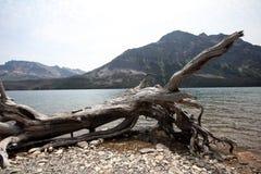 Национальный парк ледника в Монтане, США Стоковое Изображение