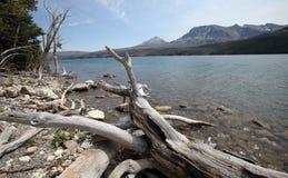 Национальный парк ледника в Монтане, США Стоковые Изображения