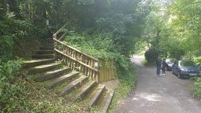 Национальный парк, железный мост, Великобритания Стоковое Изображение RF