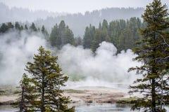 Национальный парк Йеллоустона - вулканический ландшафт пара Стоковое Фото