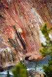 Национальный парк Йеллоустона пункта художника Стоковые Изображения RF