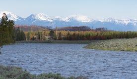 Национальный парк Йеллоустона реки Madison Стоковое Изображение RF