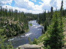 Национальный парк 4 Йеллоустона Стоковые Фотографии RF