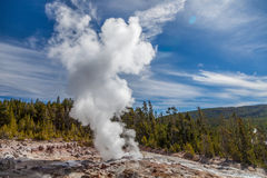 Национальный парк Йеллоустона Стоковые Изображения RF