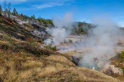 Национальный парк Йеллоустона Стоковые Фото